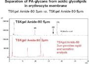 HILIC-Säulen TSK-GEL Amide-80: Neue Säulen für die hydrophile  Interaktionschromatographie