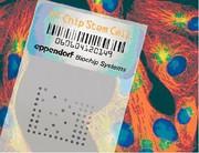 TF-Chip-Stem-Cell-Kit: Charakterisierung von Stammzellen