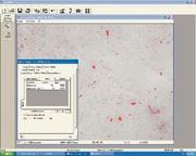 Schmutzpartikelanalysesystem QClean: Applikationspaket  für Schmutzpartikelanalysen