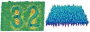 3-D-Oberflächeninspektionssystem SPARC: 3D-Oberflächeninspektion  an bewegten Objekten