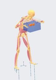 Neues/Interessantes: Simulationsanwendungen in der Medizin