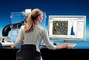Bildanalysensystem AxioVision ASSAYbuilder: High-Content-Bildanalyse