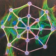 Das physikalische Labor: Dreidimensionales  Laserschreiben  im Nanometermaßstab