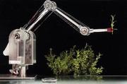 BioRob: Gibt dauernd nach