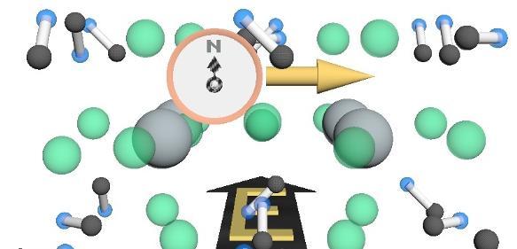 Bewegt sich ein Elektron durch organisch-anorganische Perowskit-Halbleiter, so zeigt sein Spin wie eine Magnetnadel stets senkrecht zur Bewegungsrichtung (gelb) und zu elektrischen Feldern (schwarz), die durch winzige Verzerrungen im Material erzeugt werden. Das Elektron, also Strom, kann sich dadurch effizient durch den Kristall bewegen. Stöße müssten nämlich gleichzeitig Spin und Bewegungsrichtung ändern, was selten vorkommt. Graue und grüne Kugeln stehen für die Blei- und Brom-Atome, aus denen das Material besteht, Hanteln für die eingelagerten Moleküle. (Bild: FAU/Daniel Niesner).