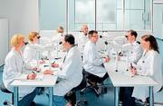 Multidiskussionseinrichtung für die Lichtmikroskopie: Identische Bilder für Mitbeobachter