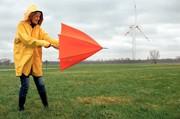 Sensorsteuerung: Hohe Anforderungen: Sensoren für Windkraftanlagen