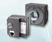Aviator CCD-Kameras: Gut kombiniert