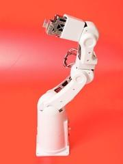 Akademischer Roboter: Hilft Studenten