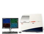 Mikroskopie: Mehrkanal-Fluoreszenz-Scanning  für die digitale Pathologie