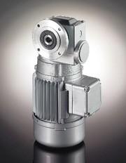 Schneckengetriebemotor: Sonderbronze