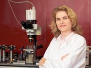 Mikroskopie und Bildauswertung: Ultramikroskop lüftet Geheimnisse