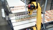 Brötchenhandling: Roboter greift Hotdogs