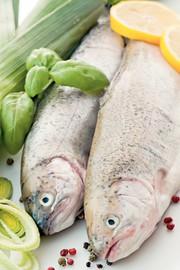 Life Sciences Innovations: Pflanzenschutzmittel im Fisch?