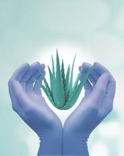 Schutzhandschuhe nitrile aloe: Nitril-Handschuh