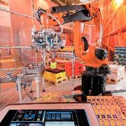 Robo-Shop: Diverse Produkte erkennen