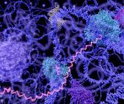 Genomics/Proteomics: Nanoliter liquid transfers aid search for new antibiotics