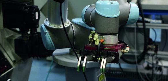 Kollabrorierender Roboter