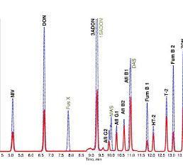 HPLC-ESI-MS/MS-Chromatogramm