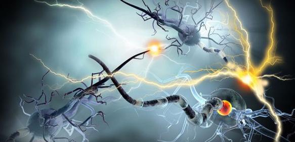 Therapeutic Behavior: Cancer Therapeutics Following Newton's Third Law