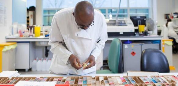 Bioinformatik-Tool RNA-seq-Explorer