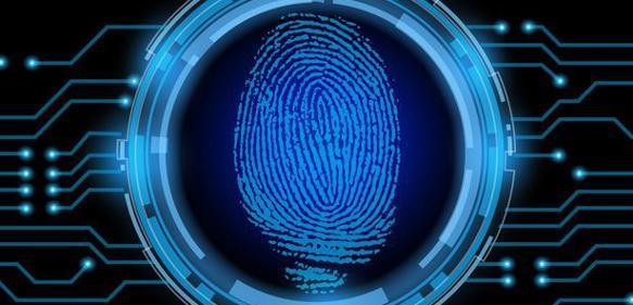 Sein oder Nichtsein: Teil 2 - Identifizierungskriterien für die Tandem-Massenspektrometrie