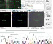 Software zur Beobachtung einzelner Zellen