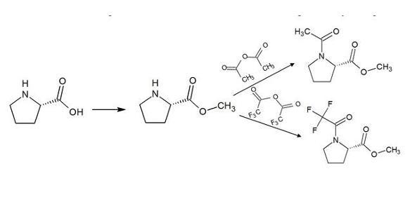 Derivatisierung von Prolin