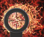 A Comprehensive Evaluation in the Clinical Space: Solid Tumor Analysis