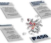 Opportunities and Challenges: An Overview of P450 Enzymes