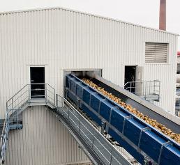 Das Förderband fördert die Zuckerrüben über eine Höhe von 22 Metern in den Produktionsprozess.