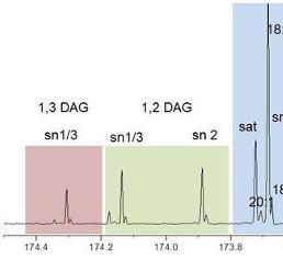 13C-NMR-Spektrum eines Öls