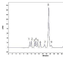 Chromatogramm einer Standardmischung von Substanzen