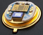 OEM-Transmitter