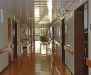 In Krankenhäusern sind immunisierende Enzyme bei Enterobacteriaceae zunehmend verbreitet
