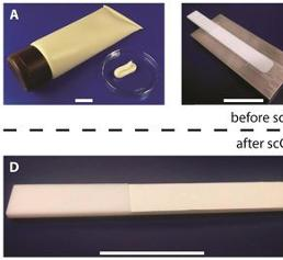 Fluid-Extraktion zur Vorbereitung von Sonnencreme-Proben