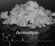 Aminolipin (Foto: Institut für Klinische Anatomie und Zellanalytik)