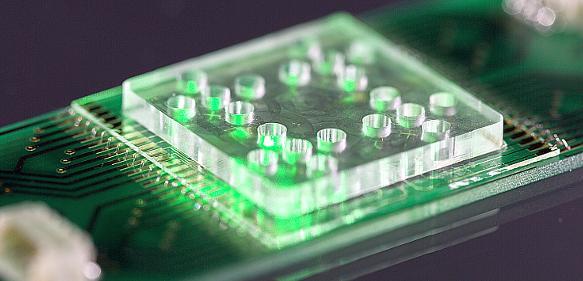 Antibiotika-Resistenzen: Lab-on-a-Chip-System für schnelle Medikamenten-Auswahl
