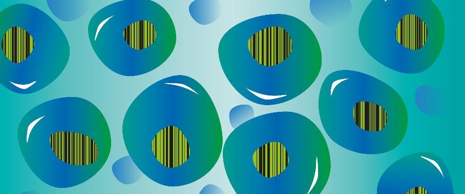 Blutstammzellen mit Barcodes