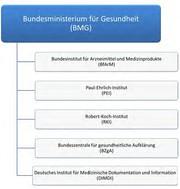Arzneimittelüberwachung in Deutschland: Teil 1: Das Bundesministerium für Gesundheit (BMG)