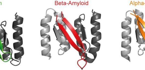 Bindeproteine