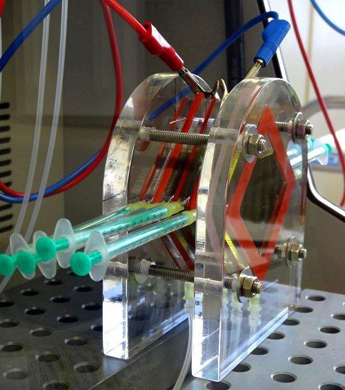 Bakterien-Batterie: Fisher Scientific treibt Spitzenforschung voran