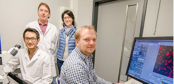 """Immunsystem: Granulozyten """"killen"""" mit Chlorbleiche"""