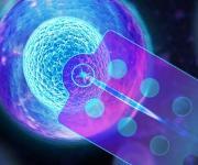 Einzel-Zell-Analyse