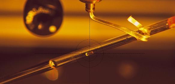 Montage eines Kristalls des Enzyms MTAN im Fokus des Neutronenstrahls im BioDiff-Instrument. (Bild / Fotograf: Andreas Ostermann / TUM)