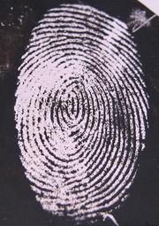 """News: Identifizierung anhand """"verborgener"""" Fingerabdrücke"""