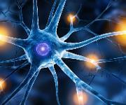 Darstellung einer Nervenzelle