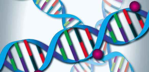 Onkologie: Rätselhafte Genabschriften nach Krebstherapie