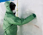 Ganze Gemeinschaften von Mikroorganismen aus der Sahara fanden die Forscher im Schnee und Eis der Alpen. (Foto: Fondazione Edmund Mach)