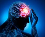 Medikamentenentwicklung: Hirnsignale für Wirkstoff-Screening